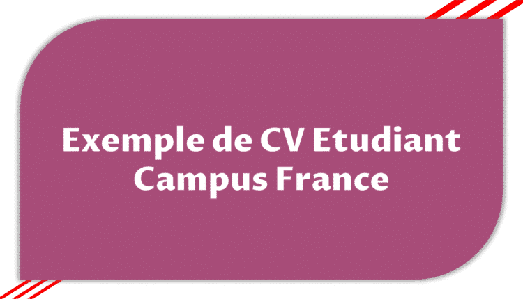 Exemple De Cv Etudiant Campus France Etudier En France