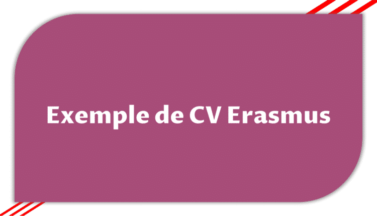 Télécharger Exemple De Cv Erasmus Etudier En France